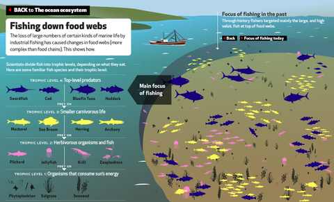 EyeOverFishing.org - Compare fisheries.jpg